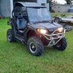 2009 Razor 800