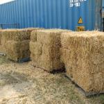 2021 Barley Bales